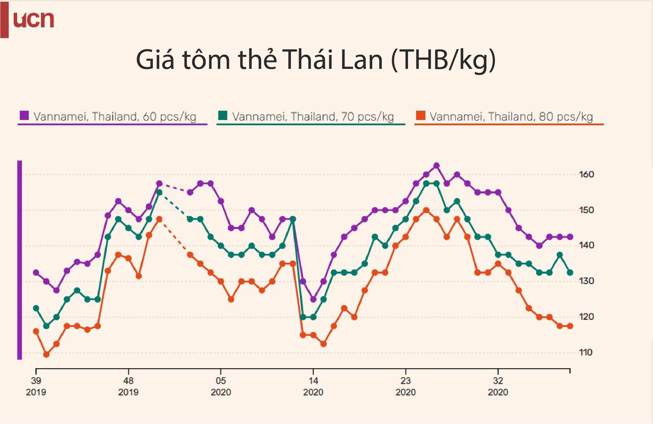 Giá tôm Thái Lan tăng trở lại khi nhu cầu của Mỹ, Trung Quốc phục hồi - Ảnh 2.