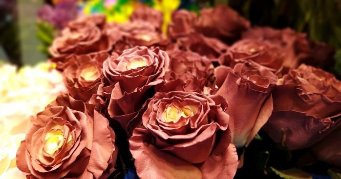 Thị trường hoa cao cấp vẫn hút khách dịp 20/10 - Ảnh 8.