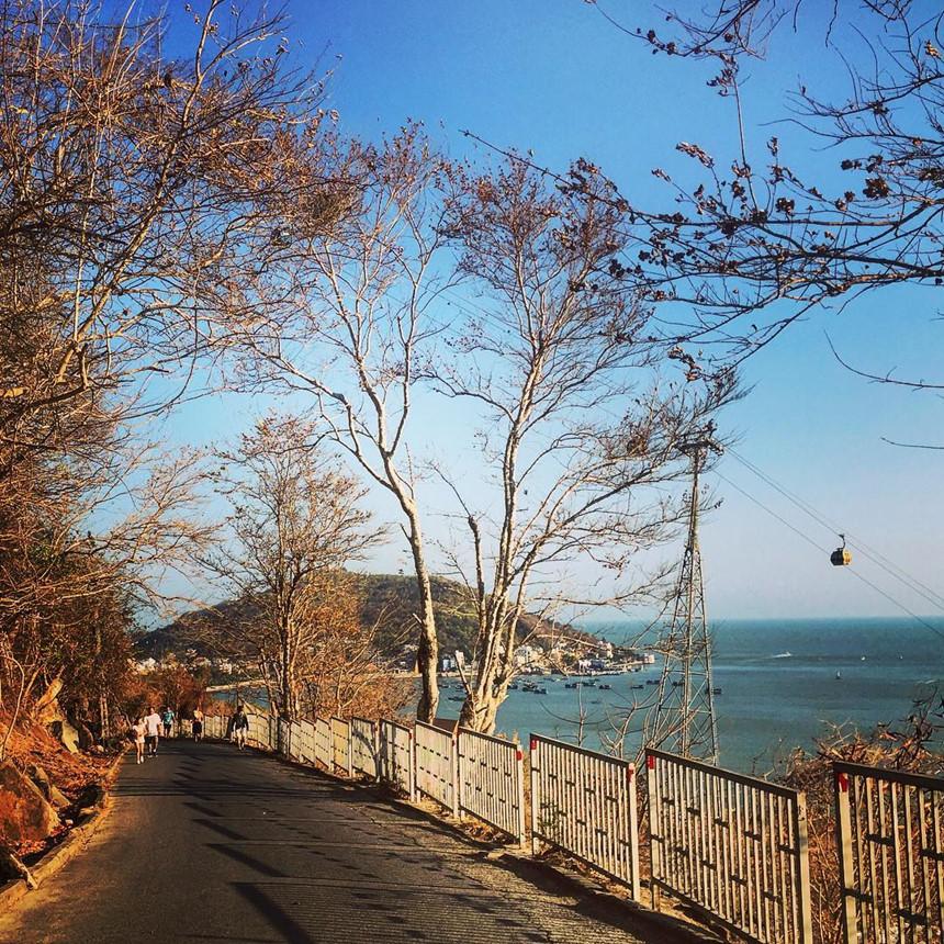 Lên ngọn hải đăng cổ, ngắm thành phố biển Vũng Tàu xinh đẹp