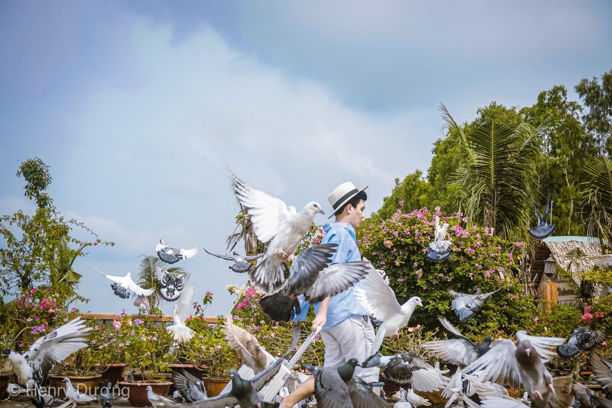 Hành trình khám phá những địa điểm đẹp nhất tại rừng tràm Trà Sư, An Giang  - Ảnh 4.