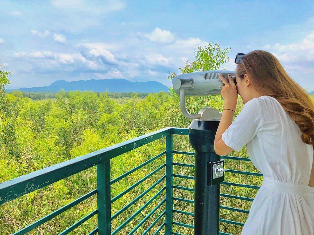 Hành trình khám phá những địa điểm đẹp nhất tại rừng tràm Trà Sư, An Giang  - Ảnh 13.