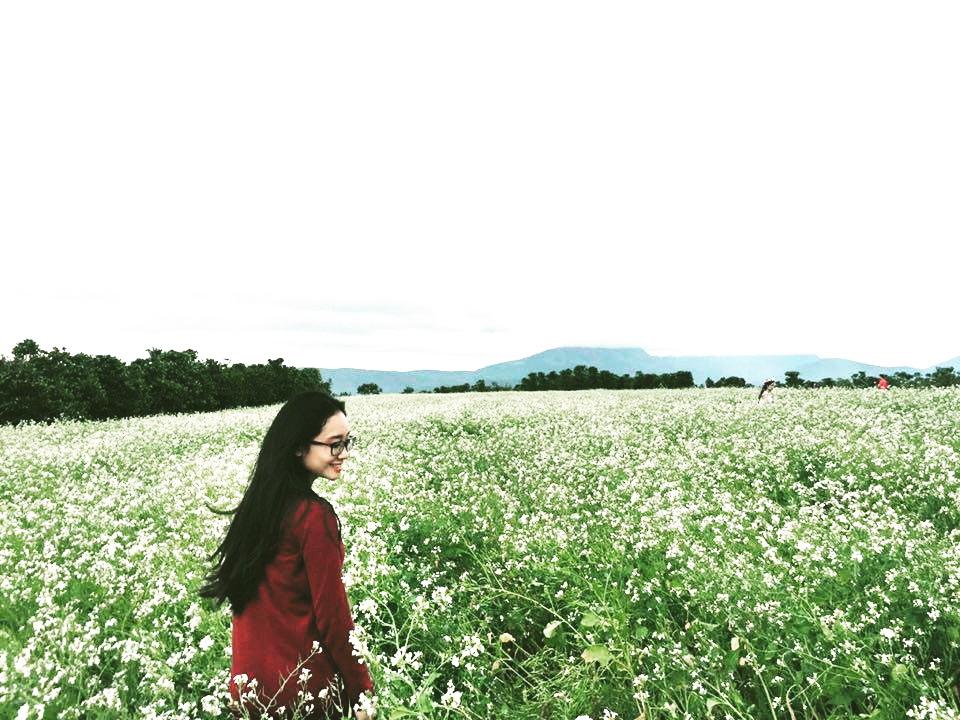 Ngẩn ngơ trước sắc trắng tinh khôi của cao nguyên Mộc Châu mùa hoa cải - Ảnh 4.