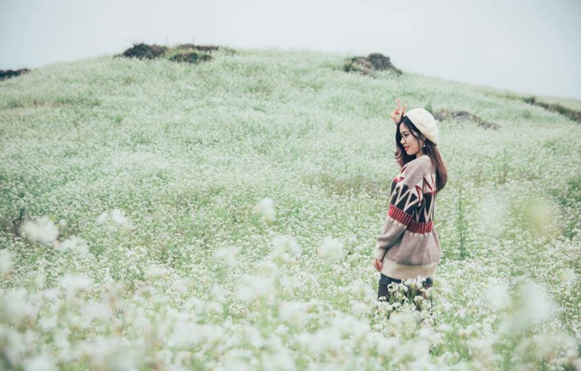 Ngẩn ngơ trước sắc trắng tinh khôi của cao nguyên Mộc Châu mùa hoa cải - Ảnh 2.