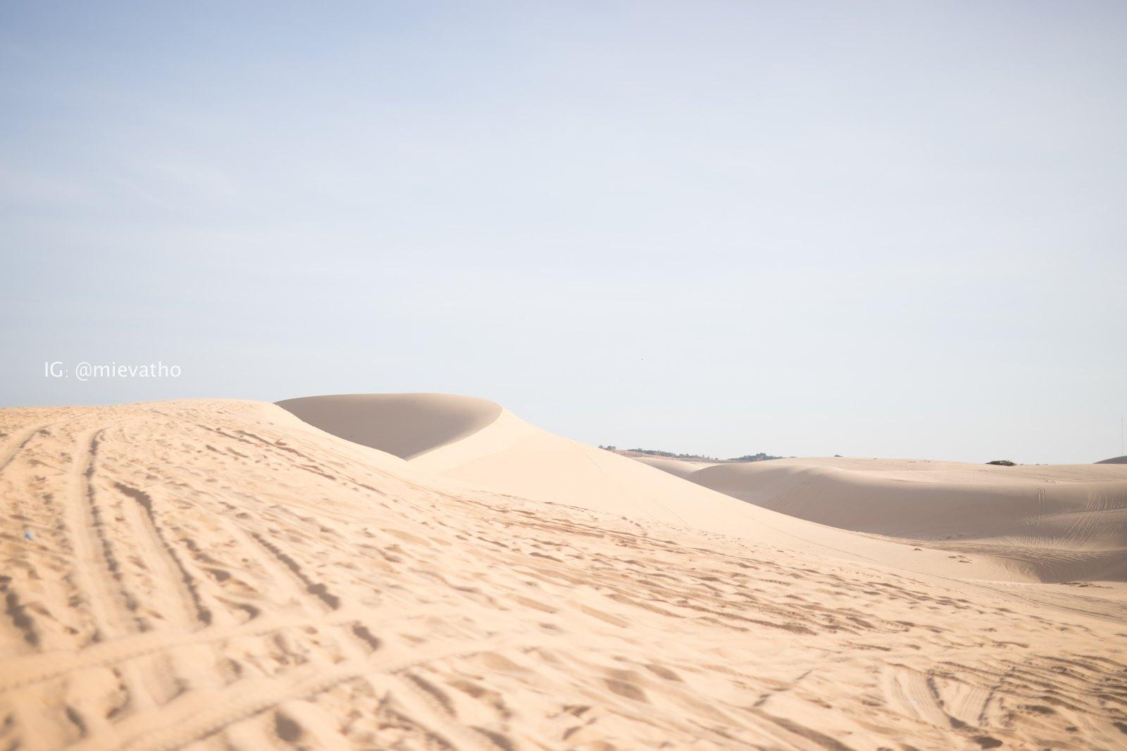 """Đến Bàu Trắng Bình Thuận, khám phá """"tiểu Sahara"""" ấn tượng của dải đất miền Trung  - Ảnh 3."""
