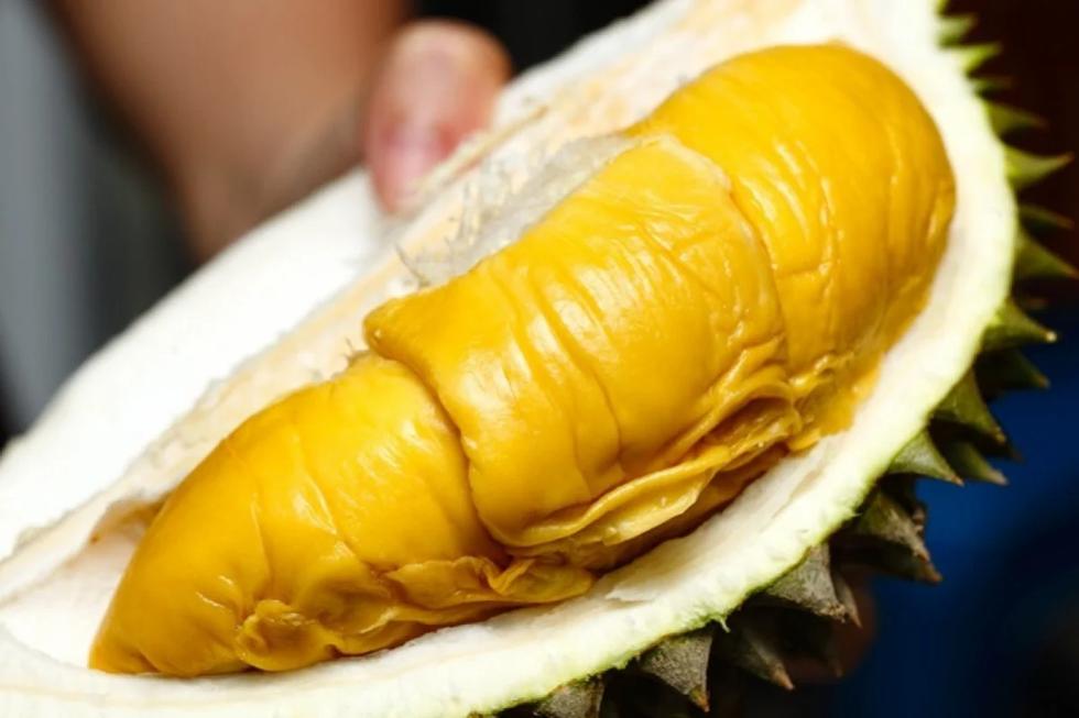 Người Trung Quốc đặt mua 300.000 trái sầu riêng Malaysia trong chưa đầy 1 giờ - Ảnh 1.
