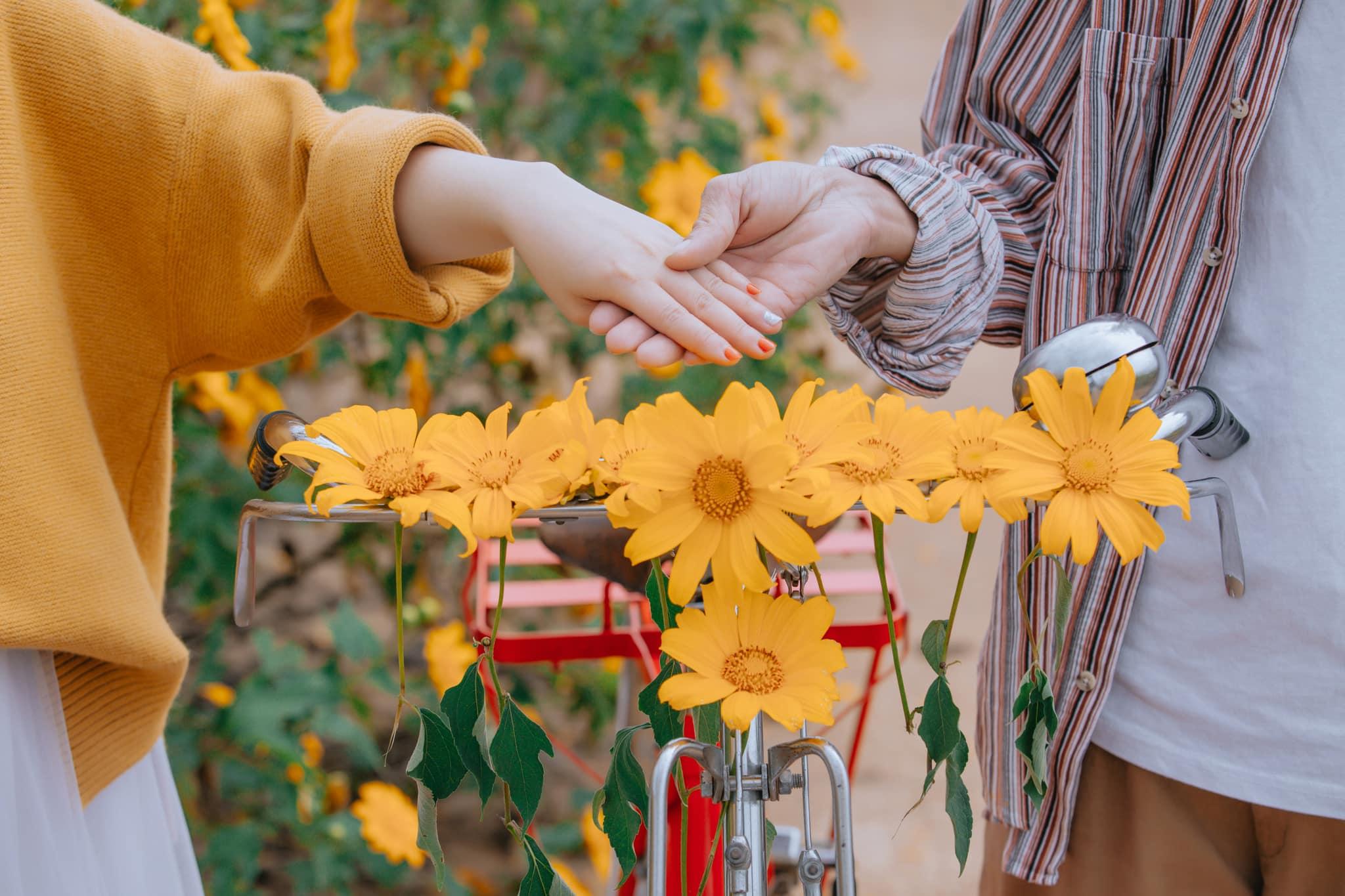 Ngắm Đà Lạt mùa hoa dã quỳ qua bộ ảnh lãng mạn của cặp đôi trẻ - Ảnh 3.