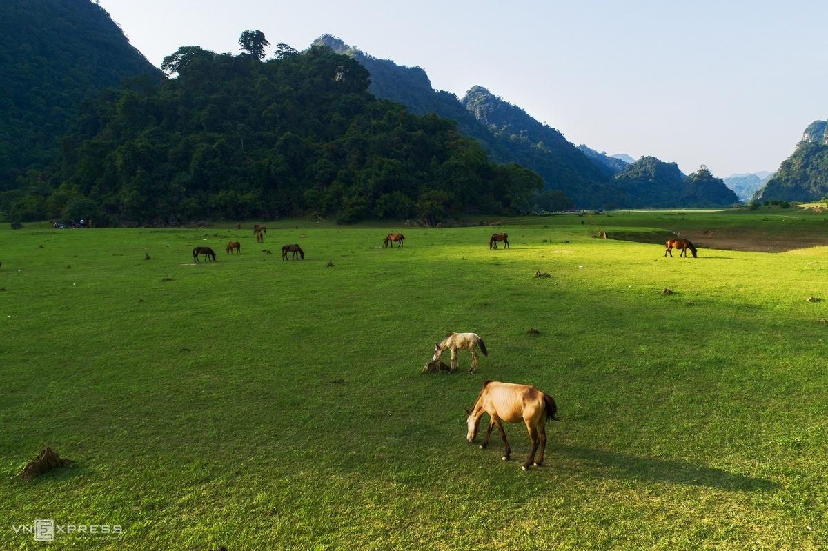 Về xứ Lạng, ghé thăm 'hòn ngọc du lịch' mới nổi mang tên Hữu Lũng - Ảnh 5.
