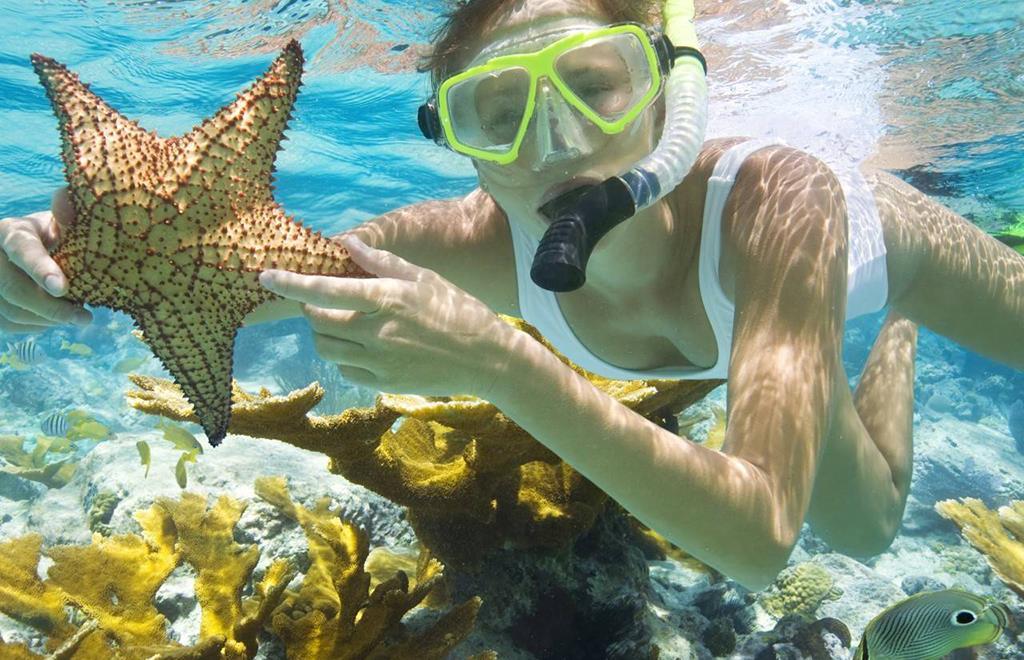 Lặn ngắm san hô, trải nghiệm hấp dẫn không nên bỏ lỡ tại 'đảo ngọc' Phú Quốc - Ảnh 3.