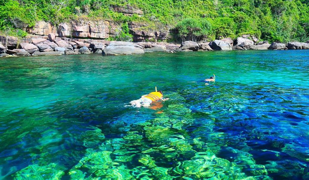 Lặn ngắm san hô, trải nghiệm hấp dẫn không nên bỏ lỡ tại 'đảo ngọc' Phú Quốc - Ảnh 7.