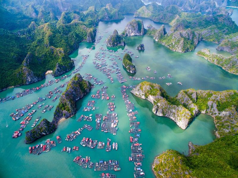 Về với đảo Cát Bà, trải nghiệm những hoạt động khám phá thiên nhiên đầy hấp dẫn - Ảnh 2.