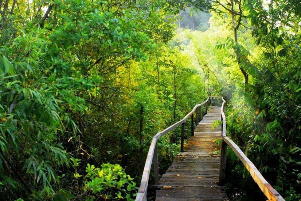 Về với đảo Cát Bà, trải nghiệm những hoạt động khám phá thiên nhiên đầy hấp dẫn - Ảnh 4.