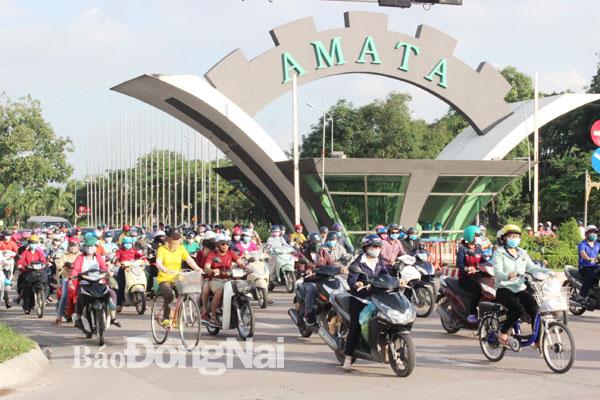 Khu công nghiệp Amata sẽ được mở rộng lên hơn 540 ha - Ảnh 1.