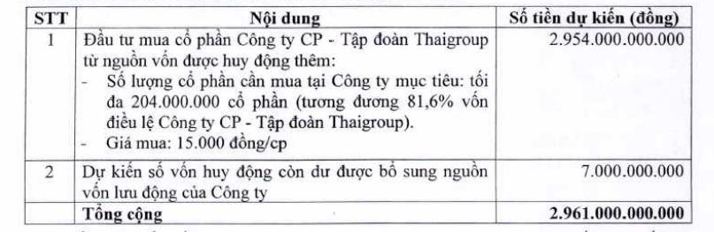 Thaiholdings chốt thời gian tăng vốn lên 3.500 tỉ đồng nhằm M&A Thaigroup - Ảnh 1.