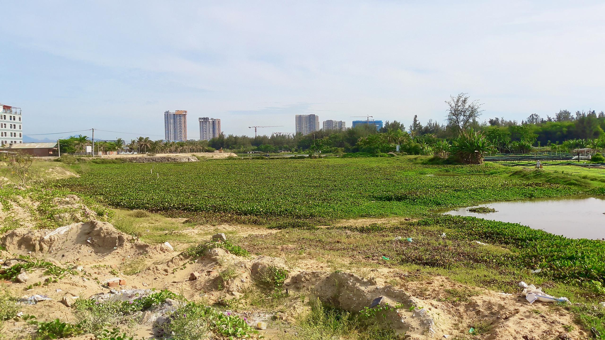 Quảng Nam lựa chọn nhà thầu thiết kế đô thị tuyến ven biển, ven sông Cổ Cò - Ảnh 1.