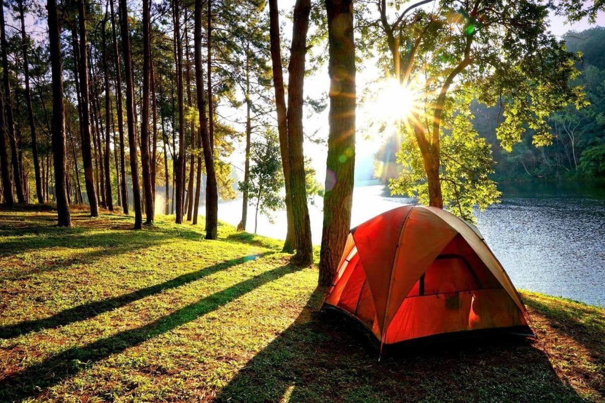 Những trải nghiệm không nên bỏ lỡ ở hồ Kẻ Gỗ, Hà Tĩnh - Ảnh 7.
