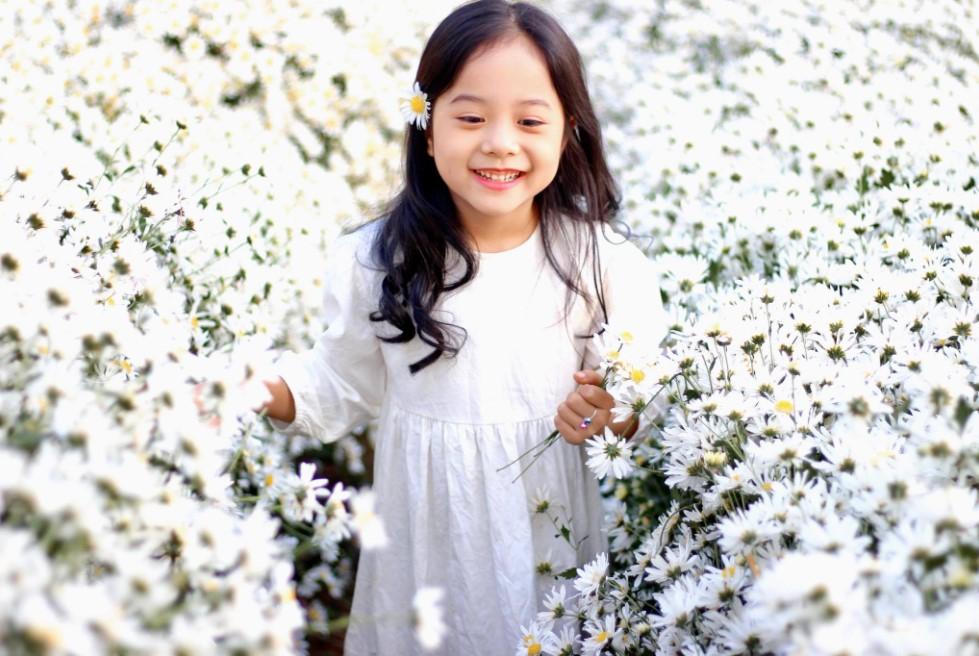 Tậu ngay bộ ảnh xinh lung linh giữa thiên đường cúc họa mi Hà Nội tháng 11 - Ảnh 7.