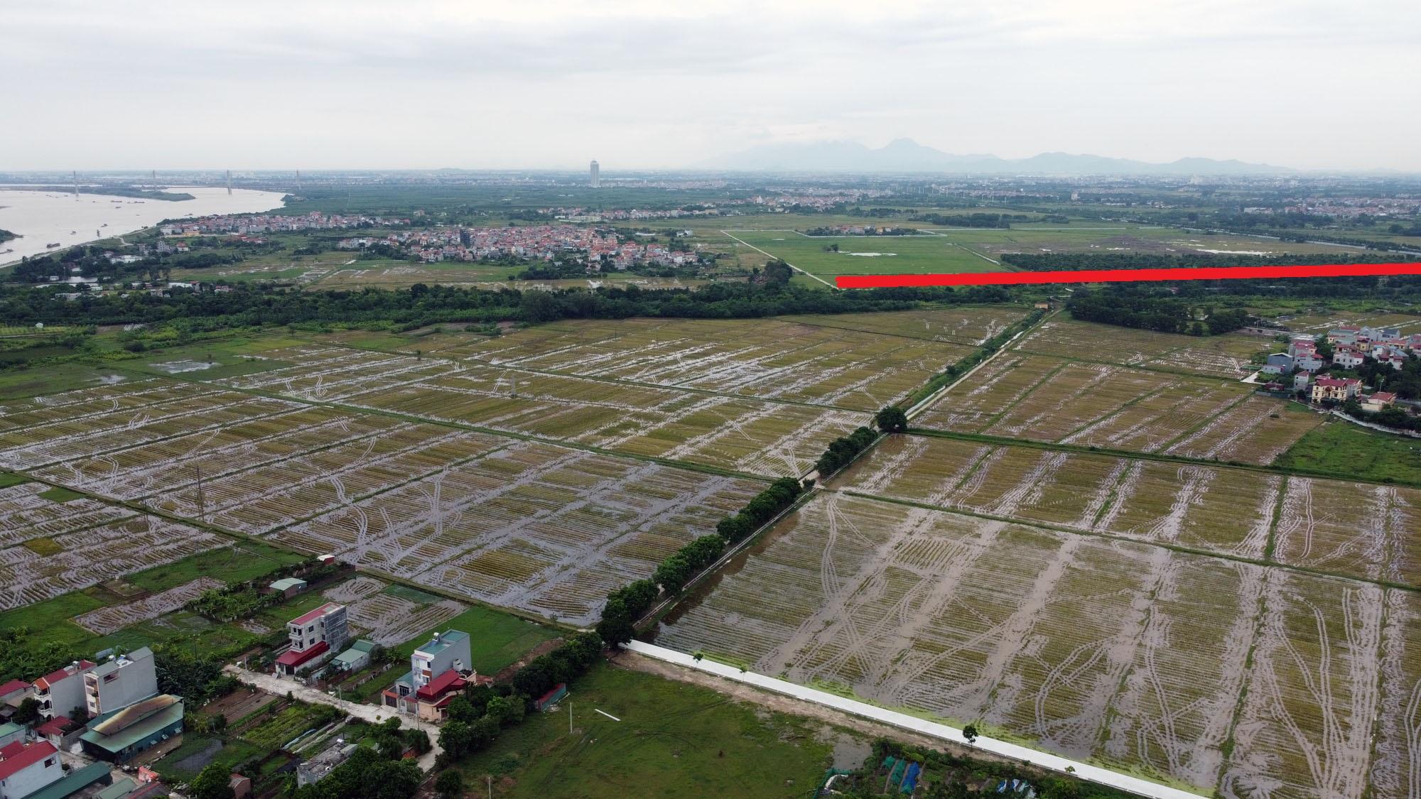 đường sẽ mở theo qui hoạch ở xã Đông Hội, Đông Anh, Hà Nội - Ảnh 4.