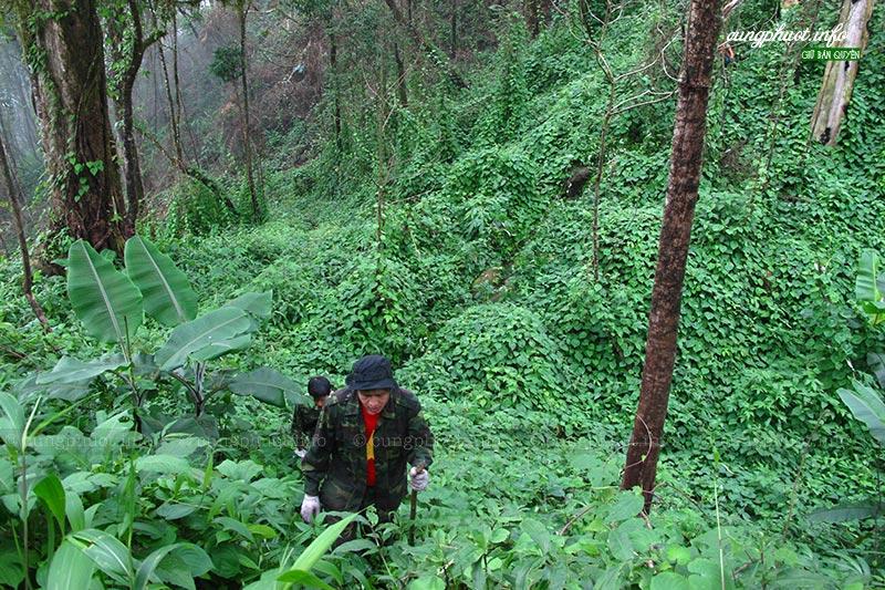 Ngã ba biên giới A Pa Chải, cung đường phượt ấn tượng giữa núi rừng Điện Biên - Ảnh 5.