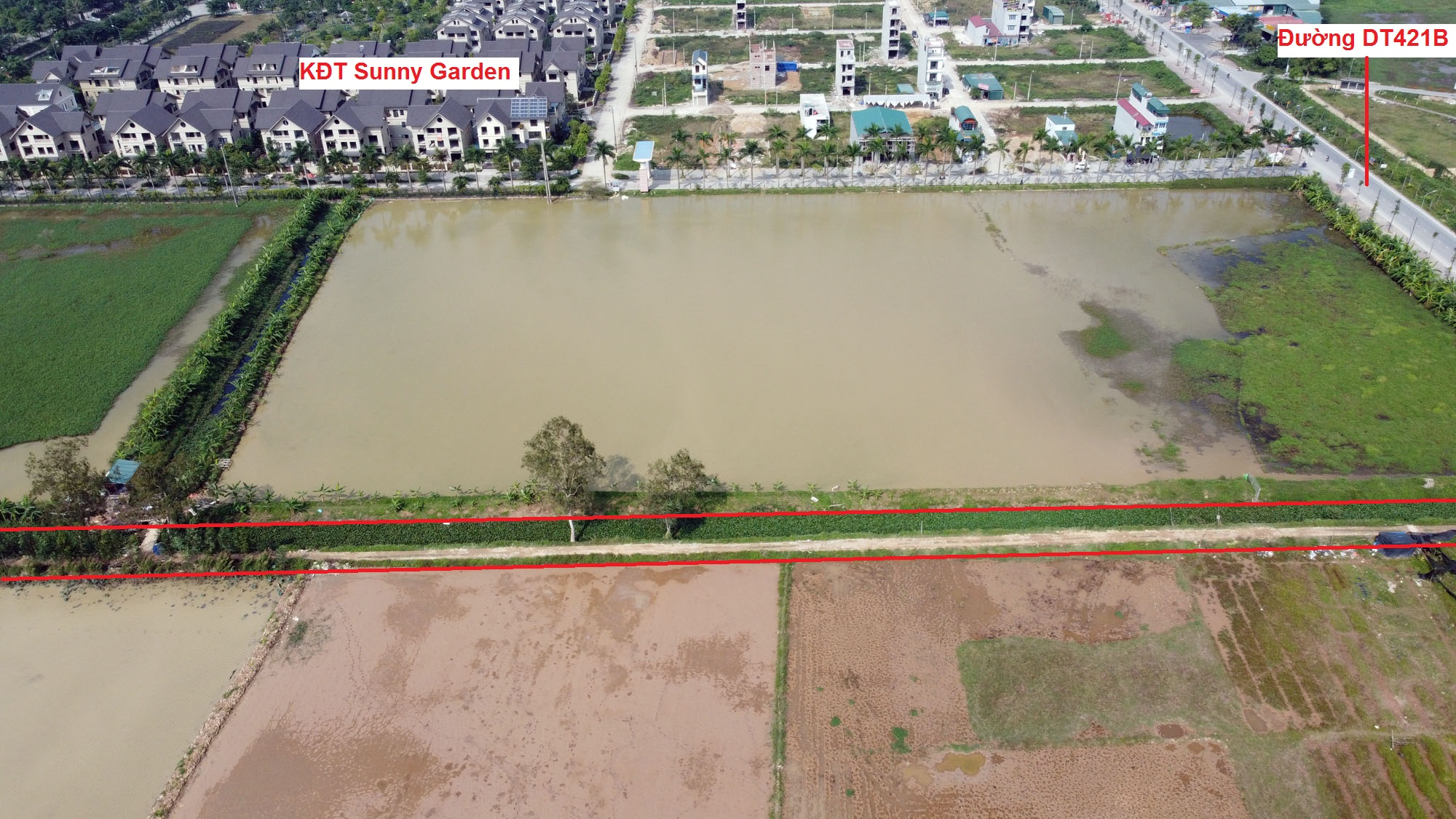 Ba đường sẽ mở theo qui hoạch ở xã Phượng Cách, Quốc Oai, Hà Nội - Ảnh 4.