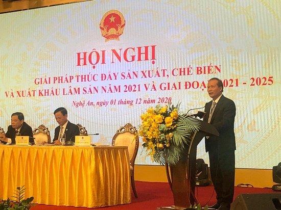 Thứ trưởng Cao Quốc Hưng chỉ ra 4 thách thức của ngành chế biến và xuất khẩu gỗ - Ảnh 1.