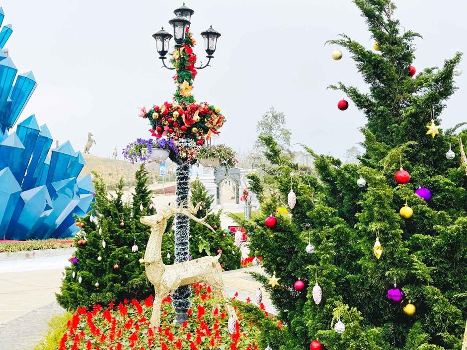 Những cây thông Noel làm từ nông sản độc đáo trong 'ngôi làng tuyết' ở Fansipan  - Ảnh 4.