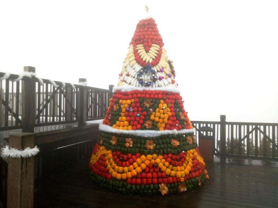 Những cây thông Noel làm từ nông sản độc đáo trong 'ngôi làng tuyết' ở Fansipan  - Ảnh 6.