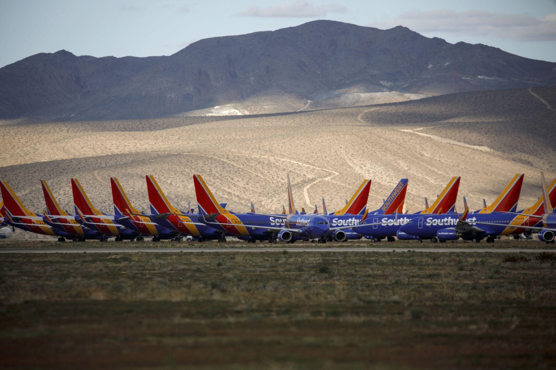 Các hãng hàng không đang bận rộn việc gì khi hơn 2/3 đội bay đang đắp chiếu? - Ảnh 1.
