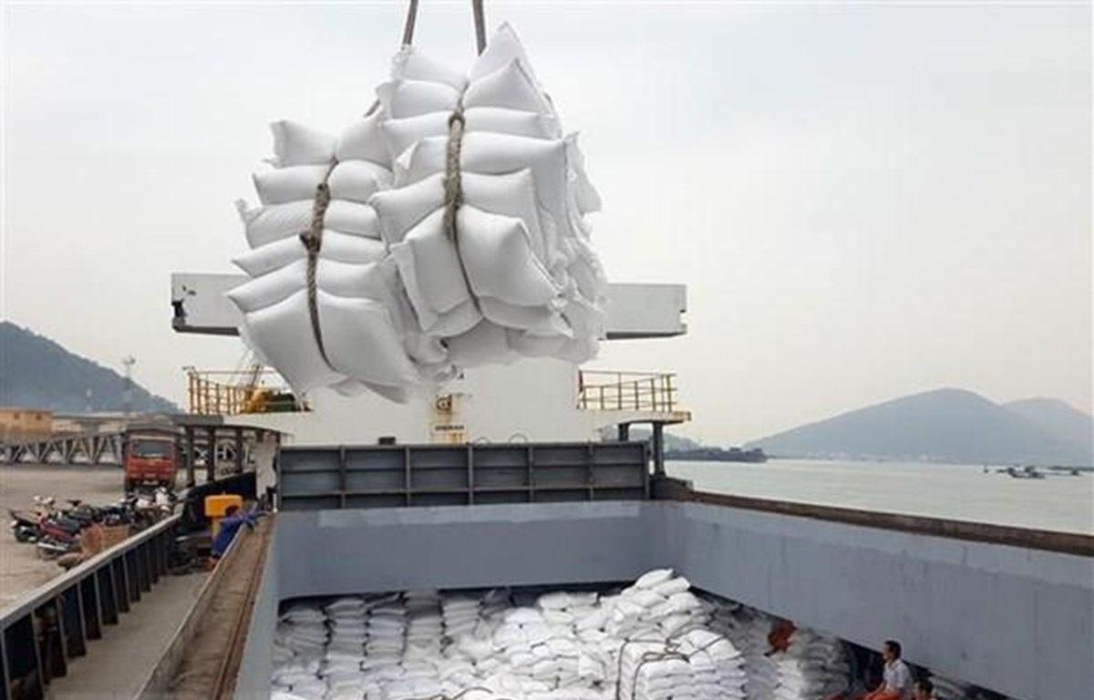 Bộ Tài chính 'nhờ' Bộ Công an xác minh tiêu cực trong xuất khẩu gạo - Ảnh 1.