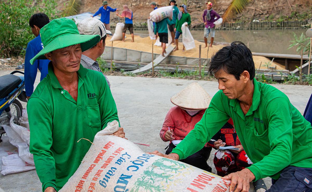 Bộ Công Thương đề nghị Bộ Tài chính cho ý kiến gấp về hạn ngạch 100.000 tấn gạo tạm ứng xuất trong tháng 4 - Ảnh 1.