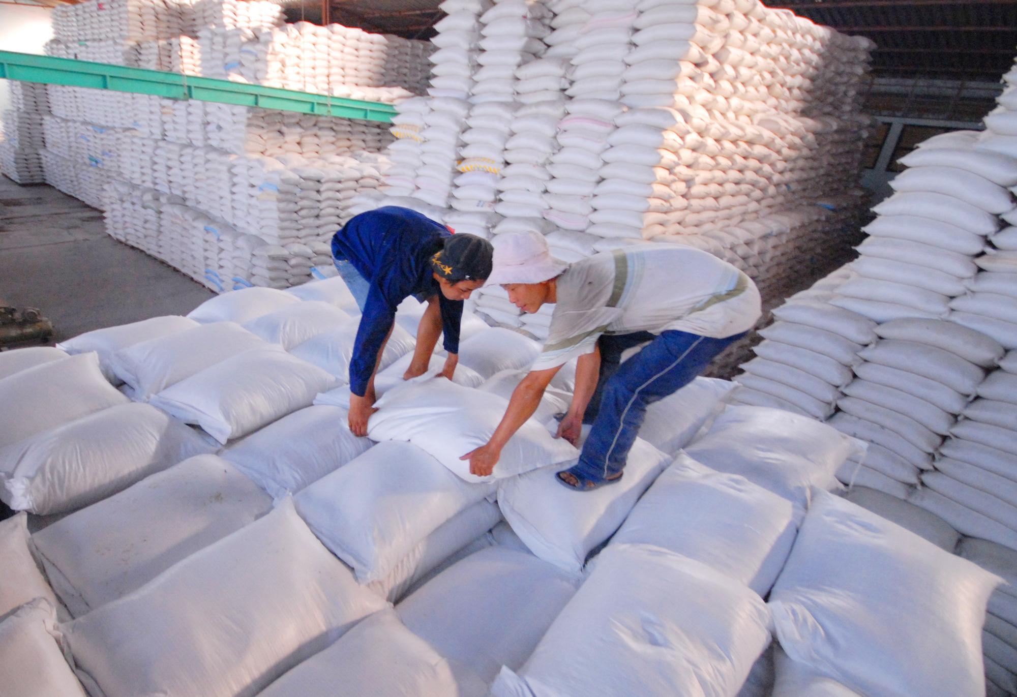 Kiến nghị cho xuất khẩu gạo bình thường, doanh nghiệp mừng ra mặt - Ảnh 1.
