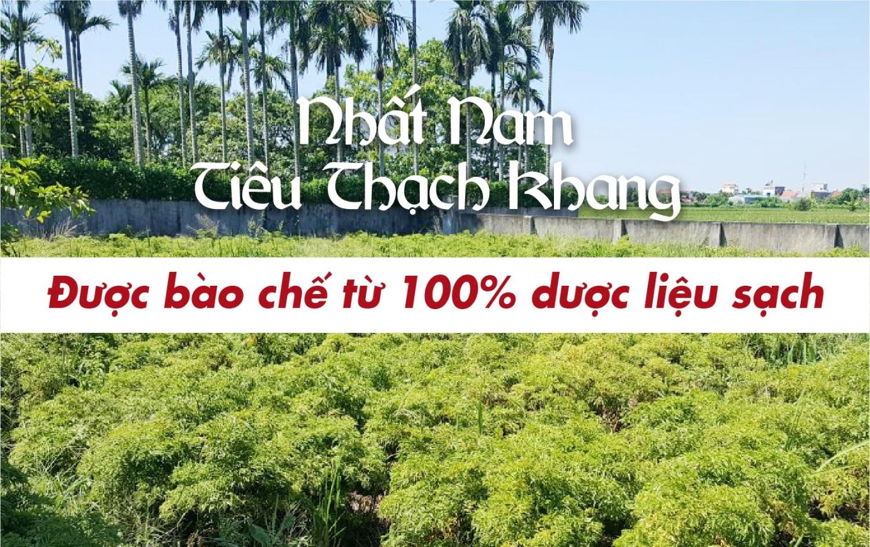 TS.BS Nguyễn Thị Vân Anh: Muốn sỏi mật không tái phát phải diệt trừ tận gốc nguyên nhân - Ảnh 3.