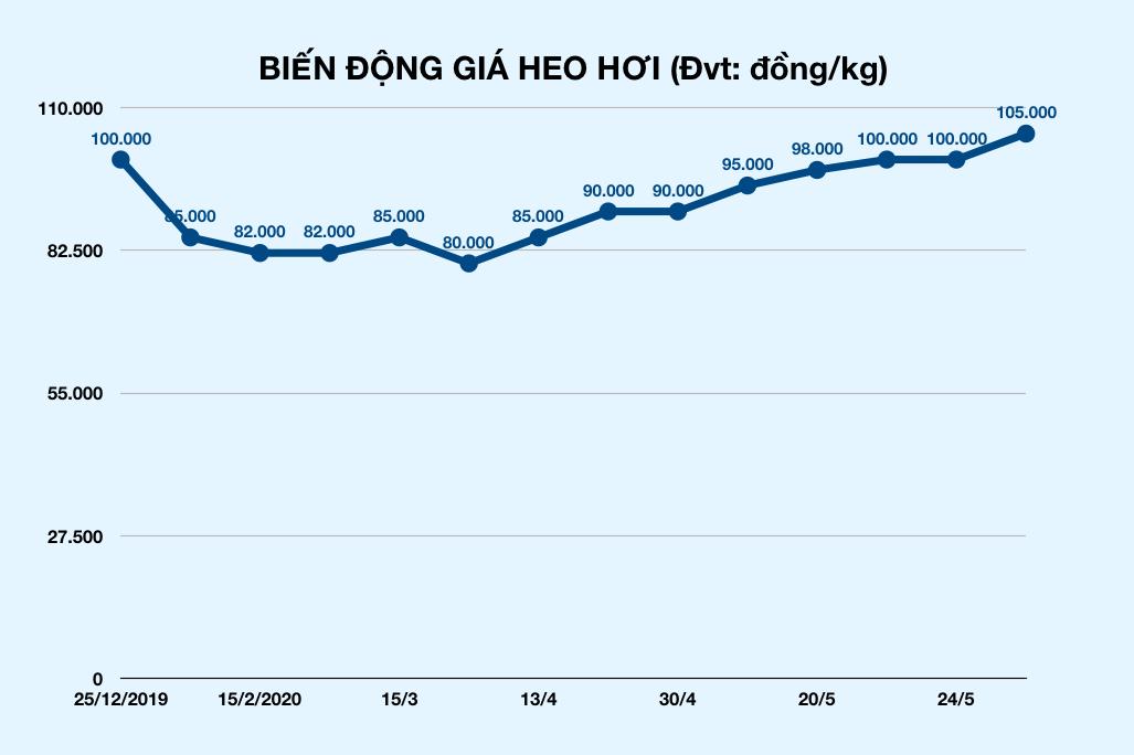 Giá heo hơi vọt lên 105.000 đồng/kg, lập đỉnh cao nhất lịch sử ngành chăn nuôi heo - Ảnh 2.