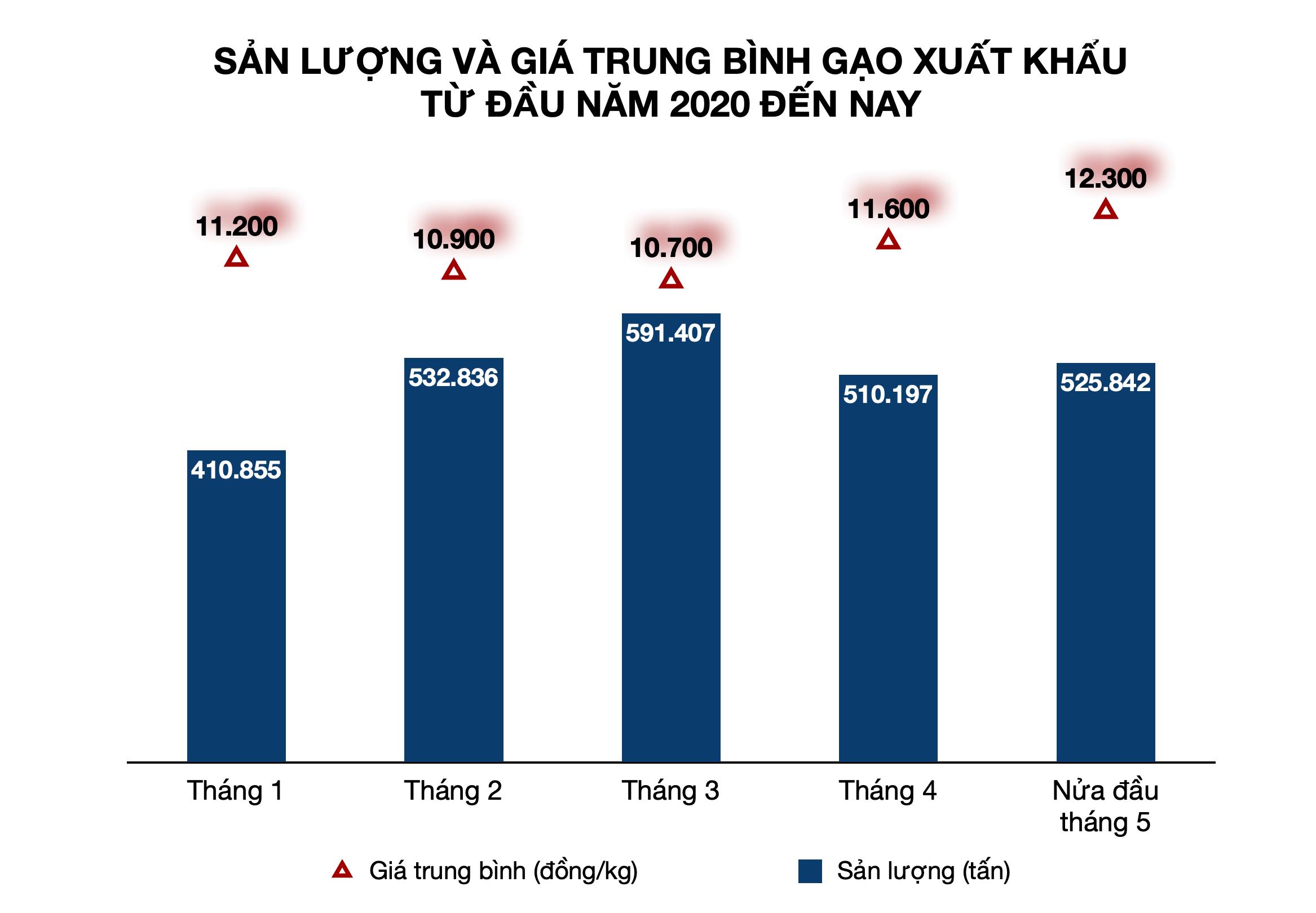 Giá gạo xuất khẩu Việt Nam đang cao nhất gần một năm qua, hơn gạo Ấn Độ gần 100 USD/tấn - Ảnh 3.