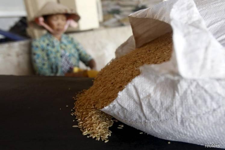 Giá gạo xuất khẩu Việt Nam đang cao nhất gần một năm qua, hơn gạo Ấn Độ gần 100 USD/tấn - Ảnh 4.
