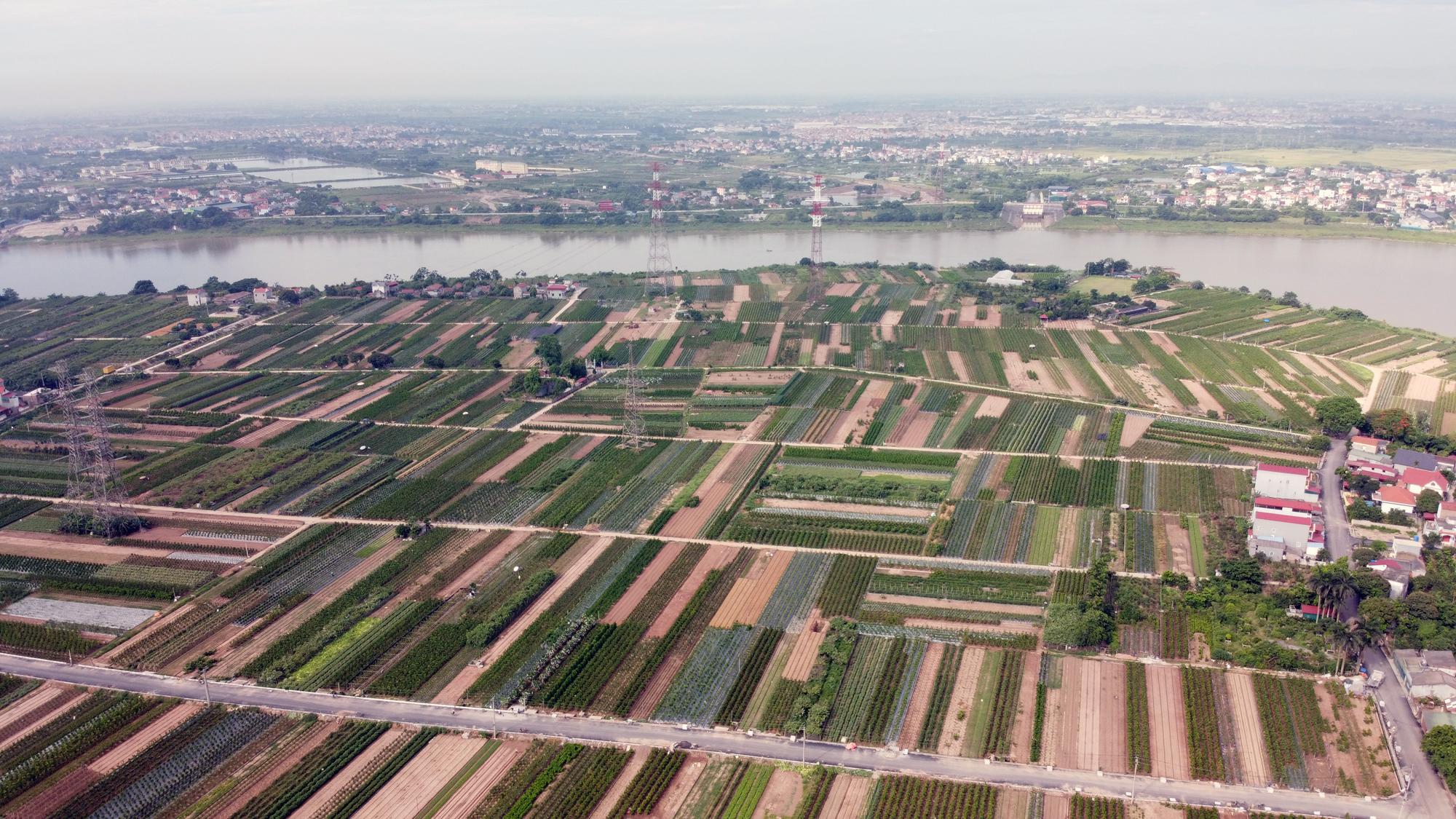 Cầu sẽ mở theo qui hoạch ở Hà Nội: Toàn cảnh vị trí làm cầu Mễ Sở nối Văn Giang - Thường Tín - Ảnh 7.