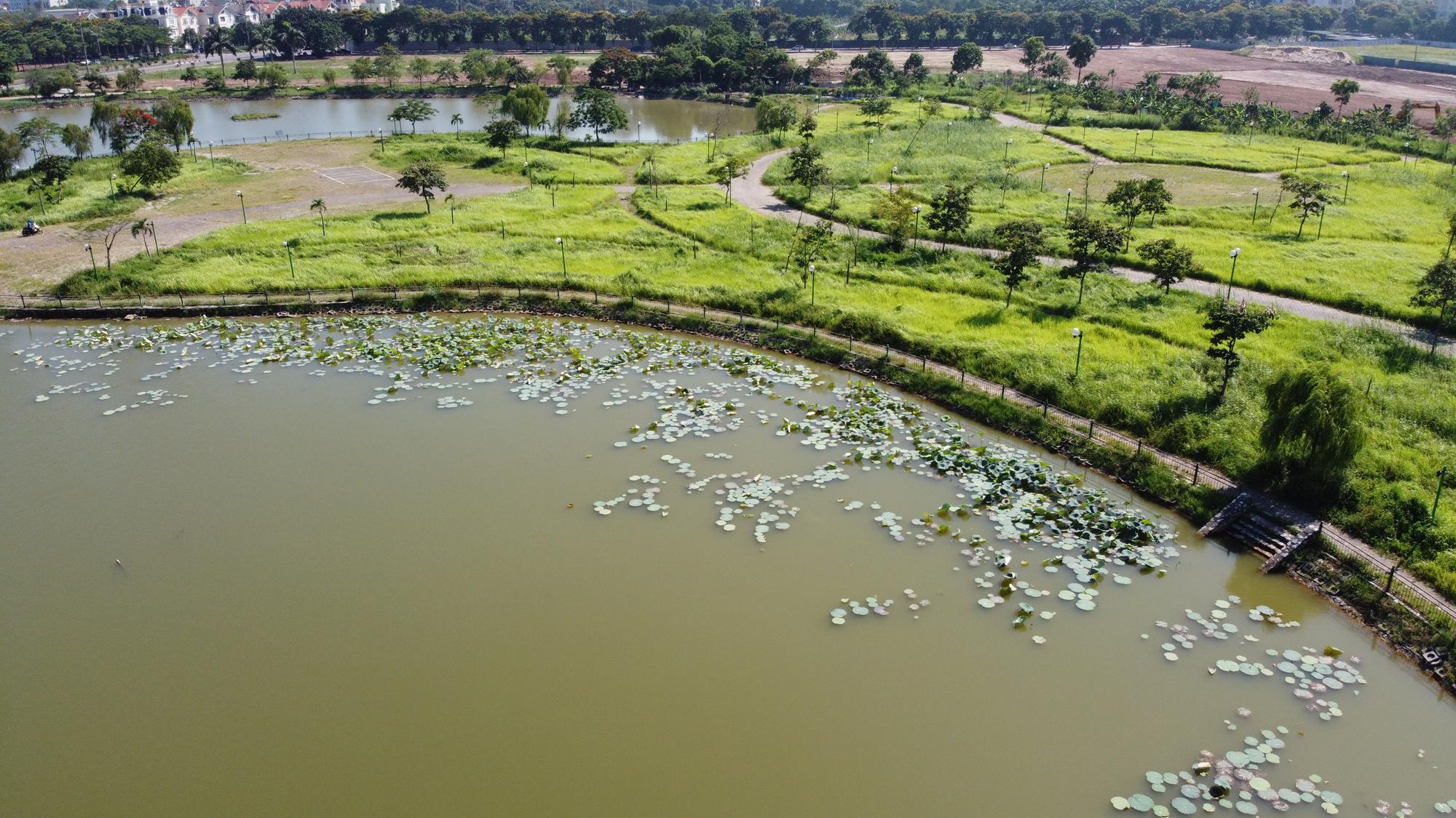 Chờ dự án cải tạo, công viên CV-02 Khu đô thị mới Việt Hưng như cánh đồng hoang - Ảnh 5.