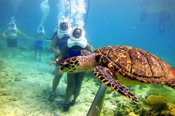 Tour du lịch Đà Nẵng 1 ngày: Đa dạng các hoạt động từ vui chơi thám hiểm đến nghỉ dưỡng thư giãn - Ảnh 5.