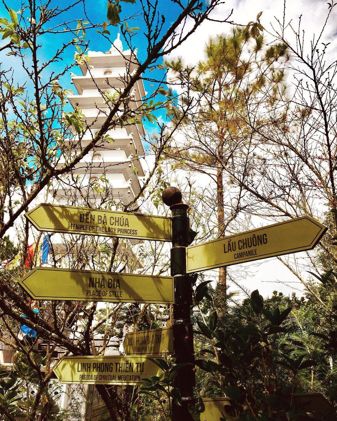 Tour du lịch Đà Nẵng 1 ngày: Đa dạng các hoạt động từ vui chơi thám hiểm đến nghỉ dưỡng thư giãn - Ảnh 10.