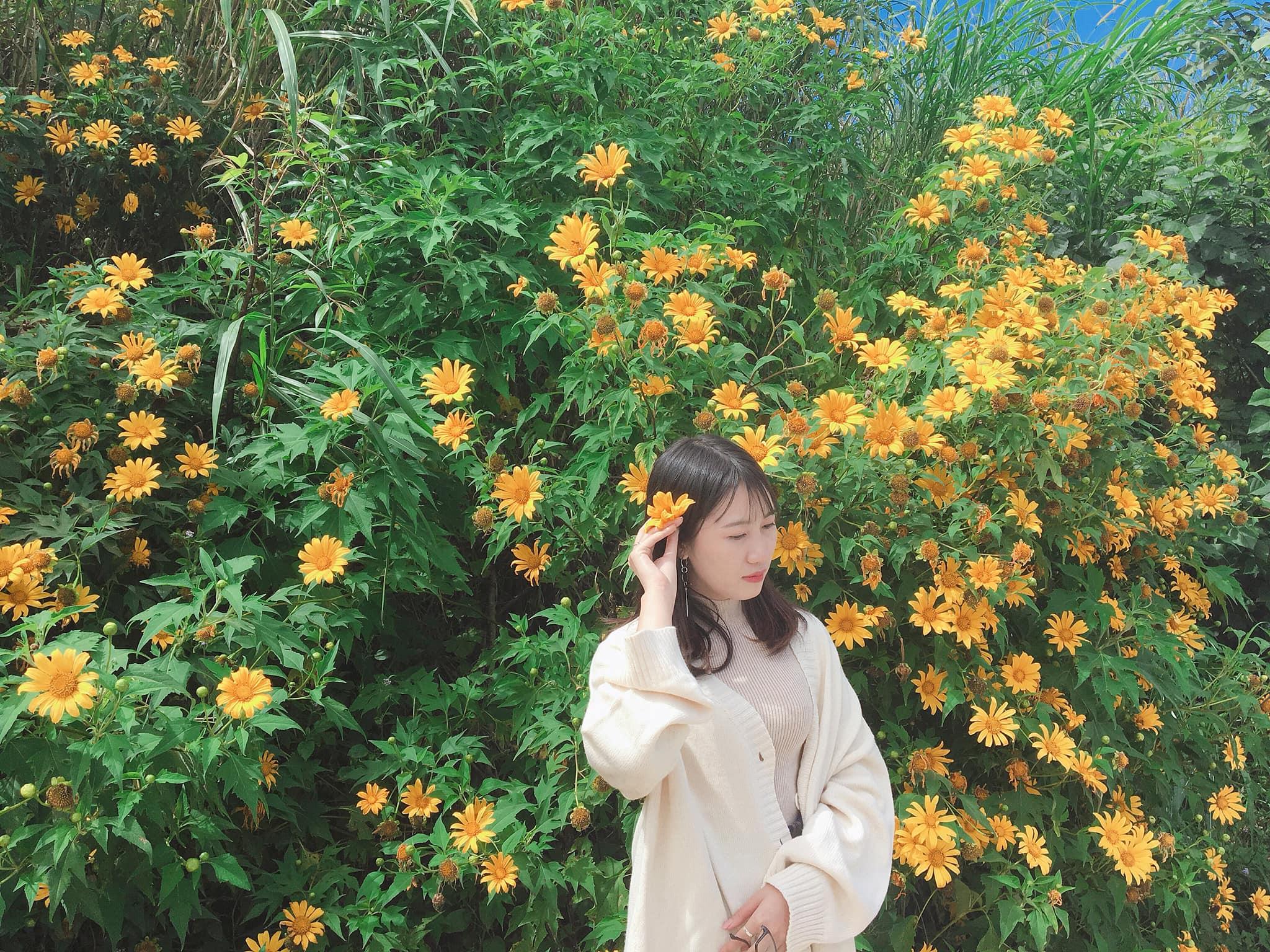 Tour du lịch Đà Lạt tháng 7: Vô vàn điểm đến hấp dẫn tại Thành phố ngàn hoa  - Ảnh 26.
