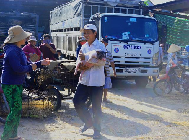 Giữa mùa khan hiếm, đắt đỏ, tìm về chợ heo giống độc nhất Việt Nam - Ảnh 6.