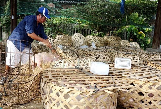 Giữa mùa khan hiếm, đắt đỏ, tìm về chợ heo giống độc nhất Việt Nam - Ảnh 7.