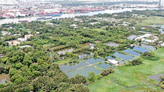 Bên trong 'siêu' đô thị bị qui hoạch treo gần 30 năm giữa lòng Sài Gòn - Ảnh 30.