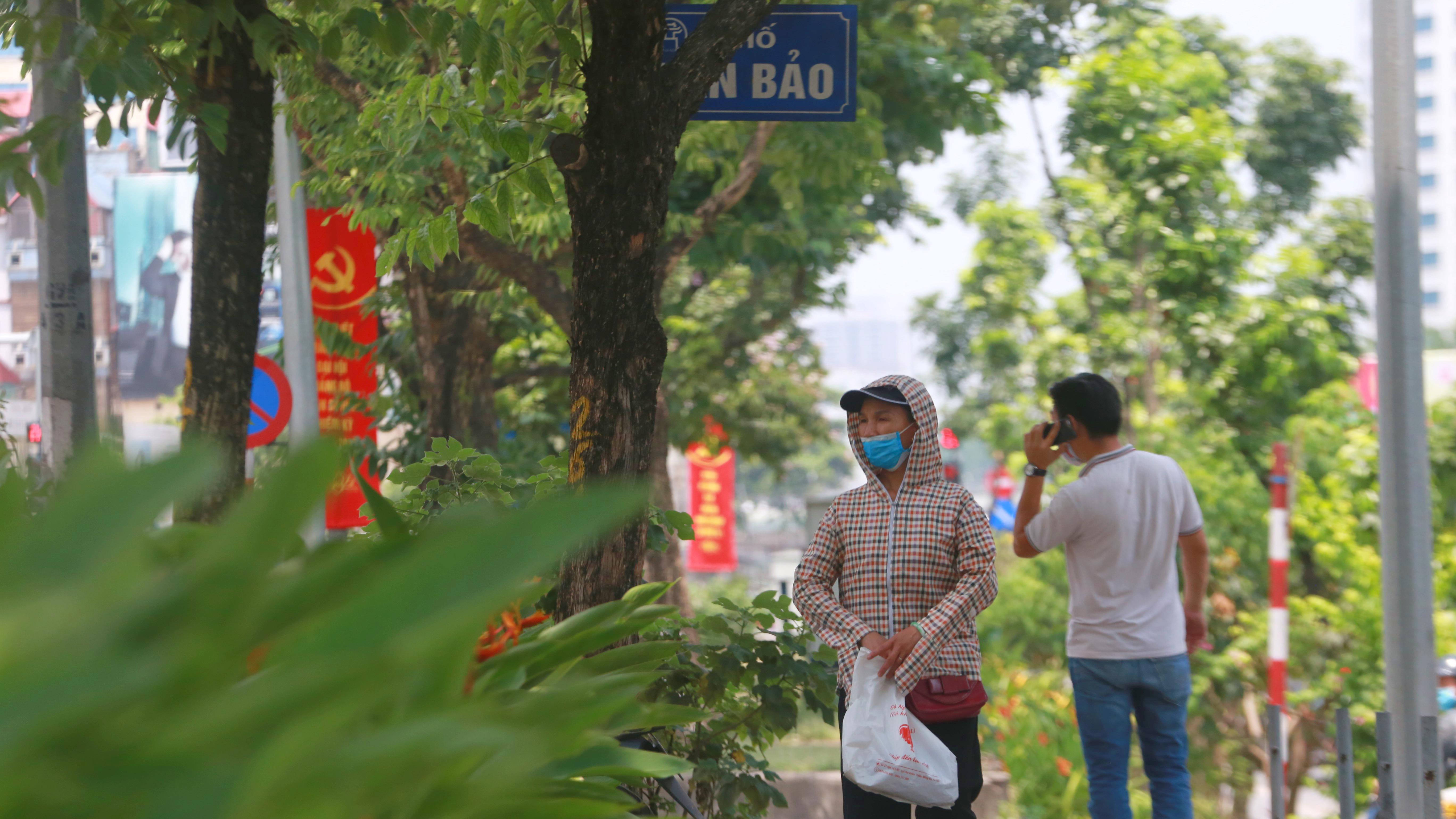 Đoạn đường Kim Mã từng di dời cây cổ thụ đang dần tái phủ xanh - Ảnh 11.