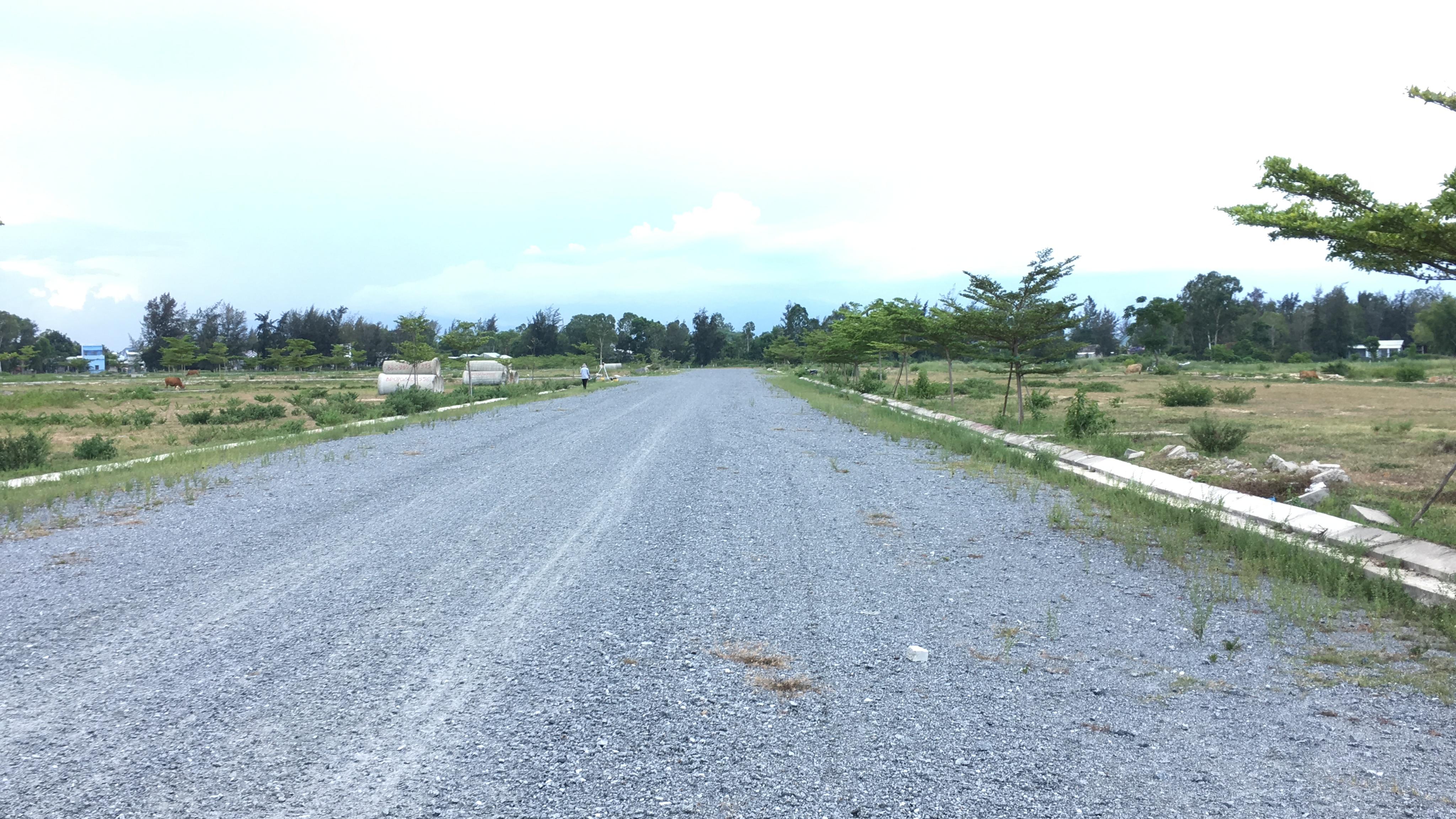Quảng Nam: Dự án Khu đô thị 7B mở rộng hạ tầng dang dở, đang là nơi chăn thả bò - Ảnh 7.