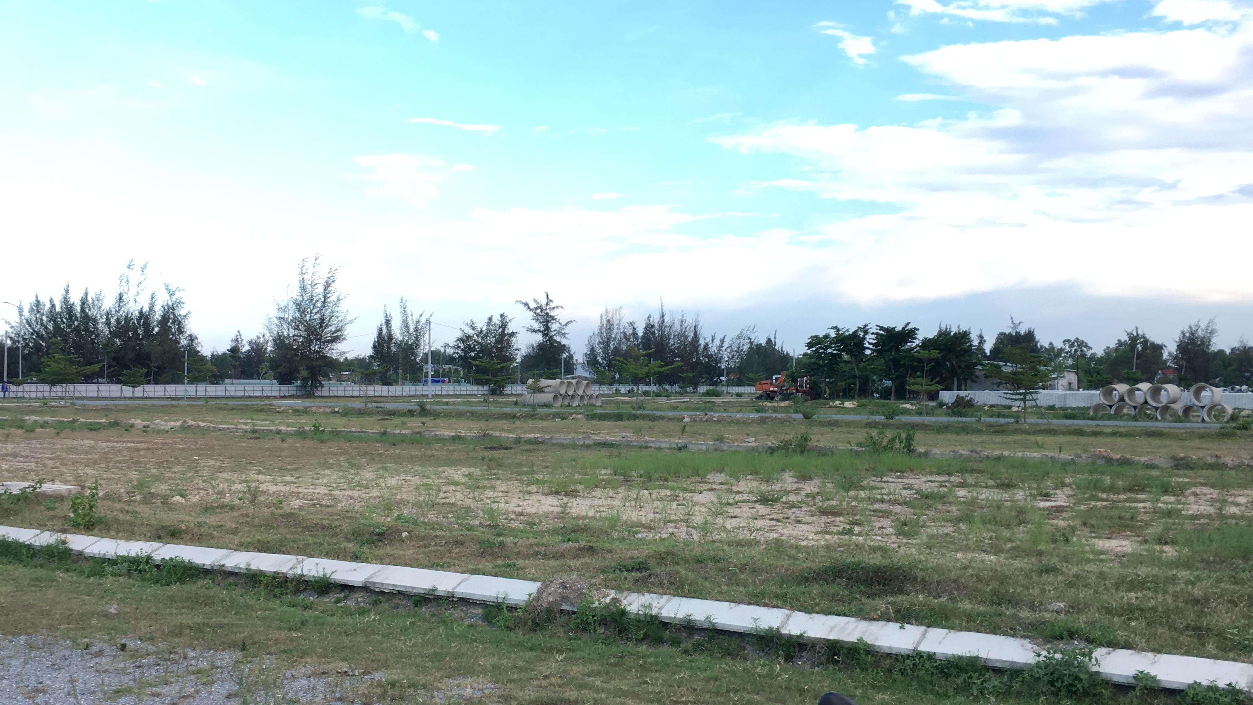 Quảng Nam: Dự án Khu đô thị 7B mở rộng hạ tầng dang dở, đang là nơi chăn thả bò - Ảnh 2.