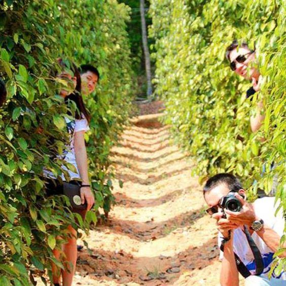 """Tour du lịch Phú Quốc tháng 7: Tận hưởng kỳ nghỉ hè """"đảo ngọc"""" với giá tour hấp dẫn  - Ảnh 15."""