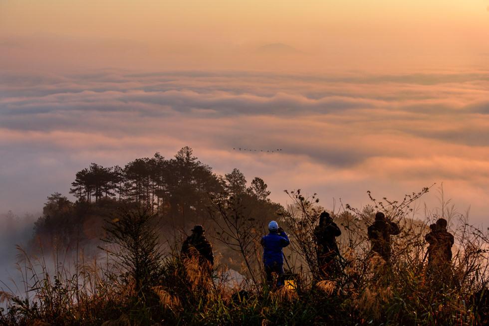 Đà Lạt, lạc giữa bềnh bồng trời mây trong mùa 'săn' đẹp nhất - Ảnh 8.
