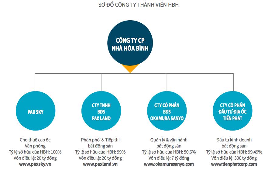 Tập đoàn Xây dựng Hoà Bình chuyển 495 tỉ đồng nợ vay của công ty con thành khoản tăng vốn - Ảnh 2.
