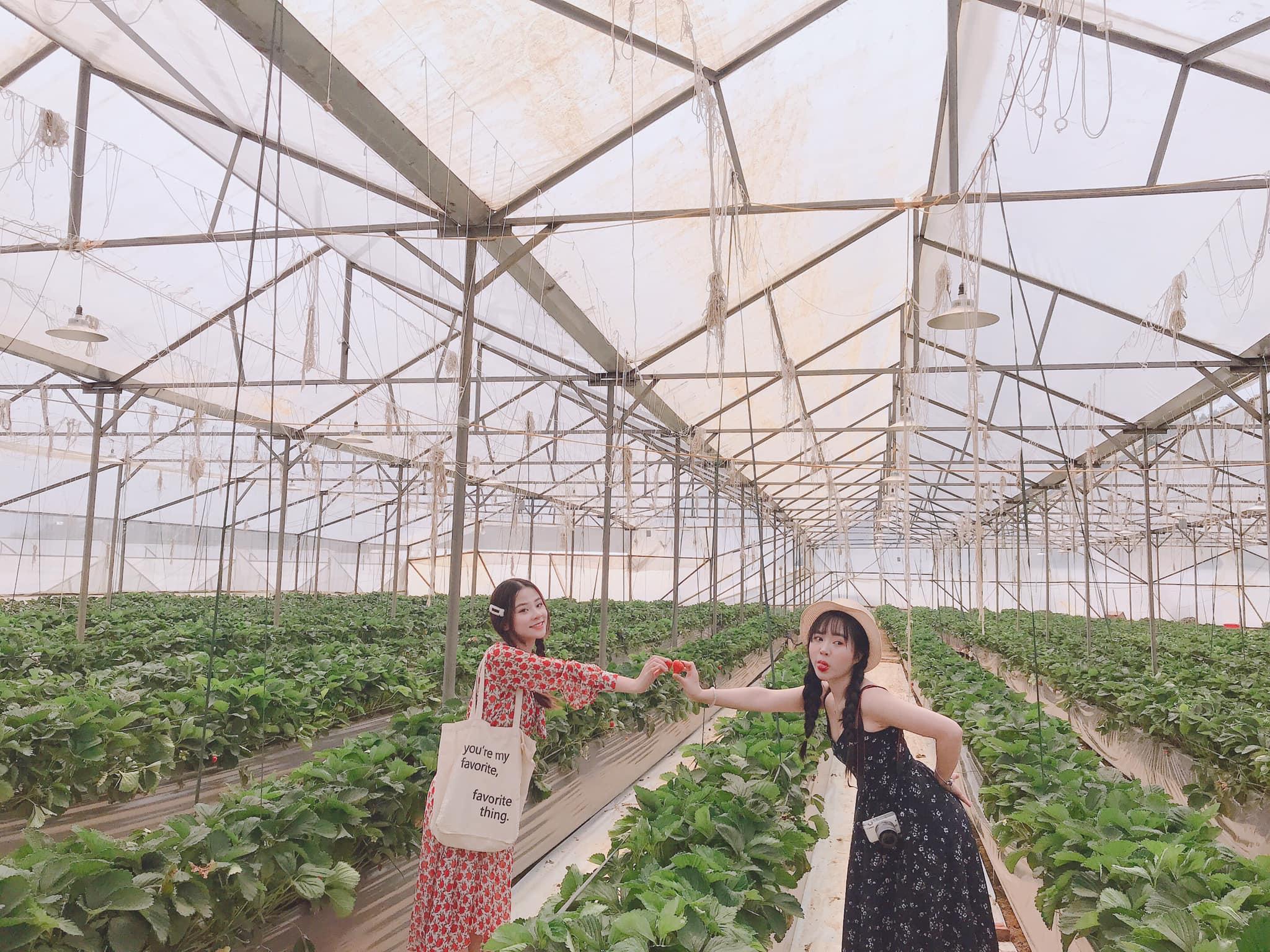 Tour du lịch Sapa khởi hành từ Hà Nội: Chi phí trọn gói chỉ từ 1,1 triệu đồng - Ảnh 12.