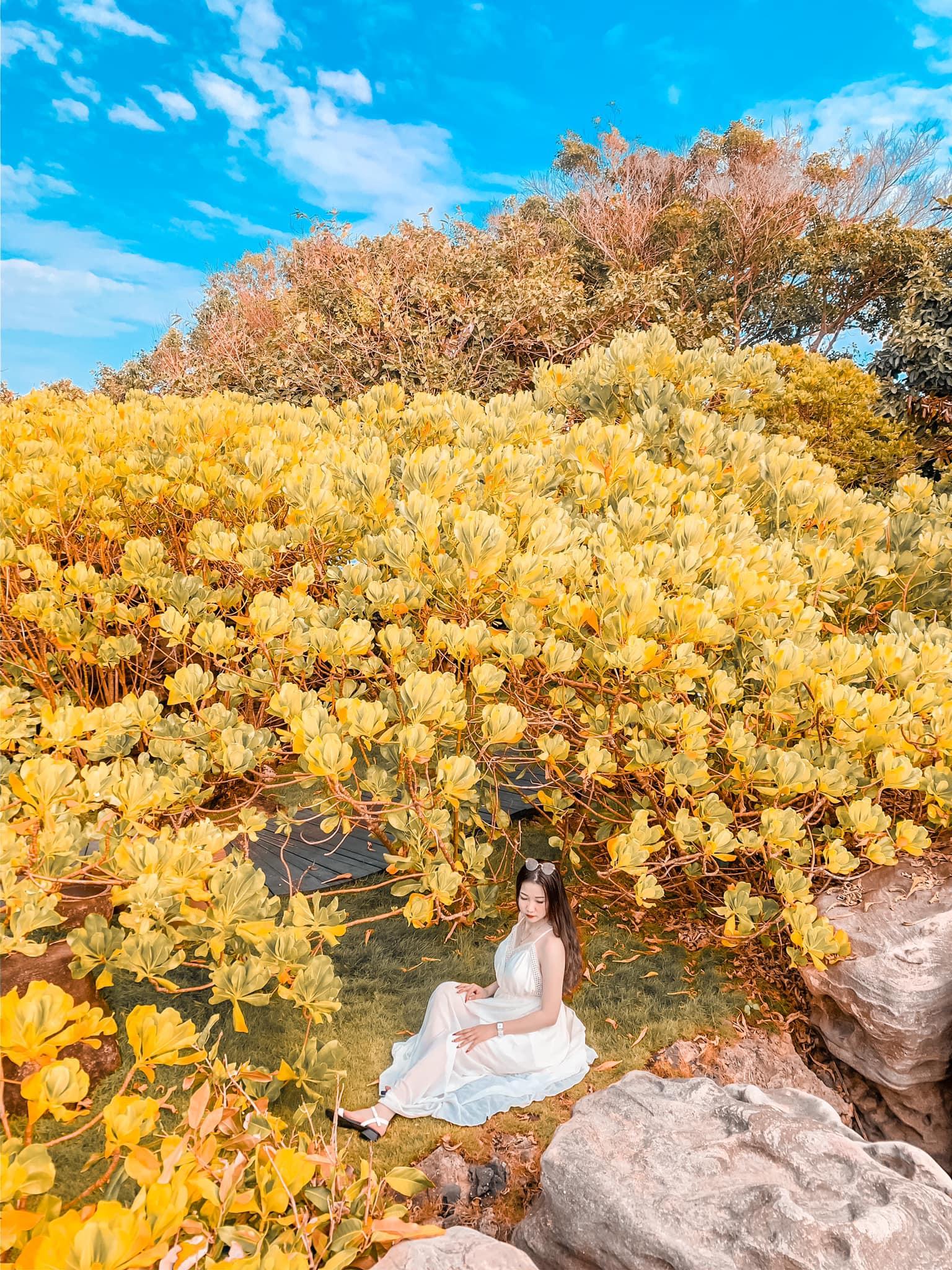 Tour du lịch Phú Quốc khởi hành từ Rạch Giá: Vô vàn ưu đãi trong dịp hè này  - Ảnh 29.